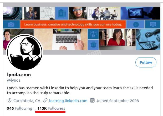 lynda twitter followers